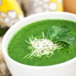 Spinach Soup Blender Recipe
