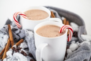 Peppermint Hot Cocoa Blender Recipe